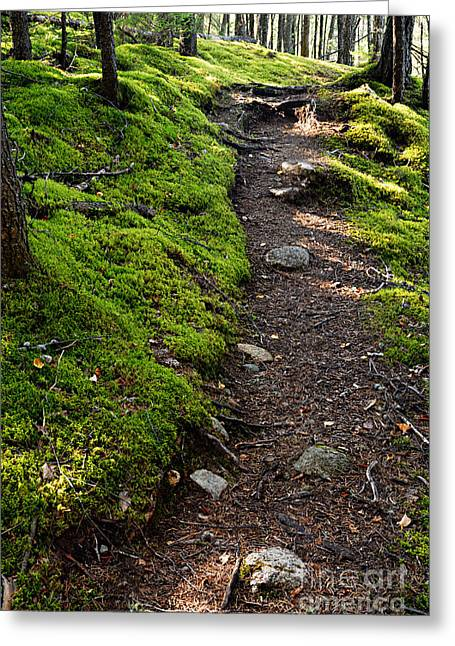 Portage Path Greeting Card by Larry Ricker