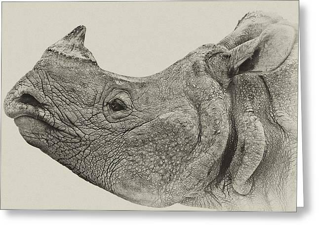 Rhinoceros Unicornis Greeting Cards - Portrait of a Asian one-horned rhinoceros Greeting Card by Urs Schweitzer