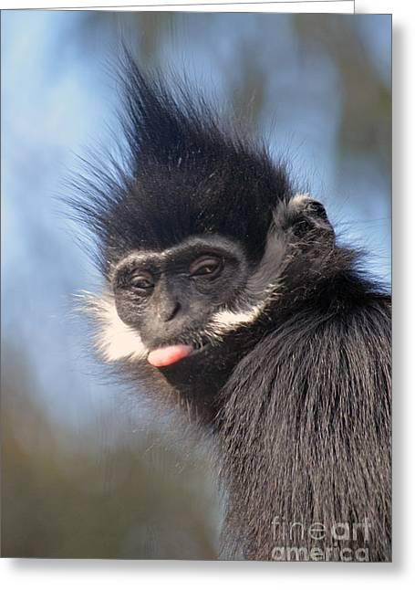 Francois Digital Greeting Cards - Portrait of a Francois Langur Monkey Greeting Card by Jim Fitzpatrick