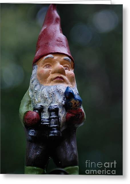 Bokeh Greeting Cards - Portrait of a Garden Gnome Greeting Card by Amy Cicconi
