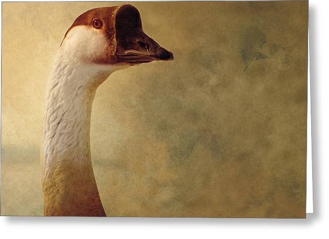 Mother Goose Greeting Cards - Portrait of a Goose Greeting Card by Fran Riley