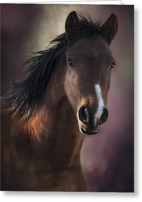 Creative Manipulation Greeting Cards - Portrait Of A Horse Greeting Card by Ronel Broderick