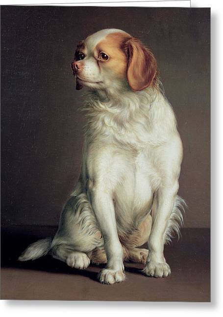 Spaniel Greeting Cards - Portrait of a King Charles Spaniel Greeting Card by Louis Leopold Boilly