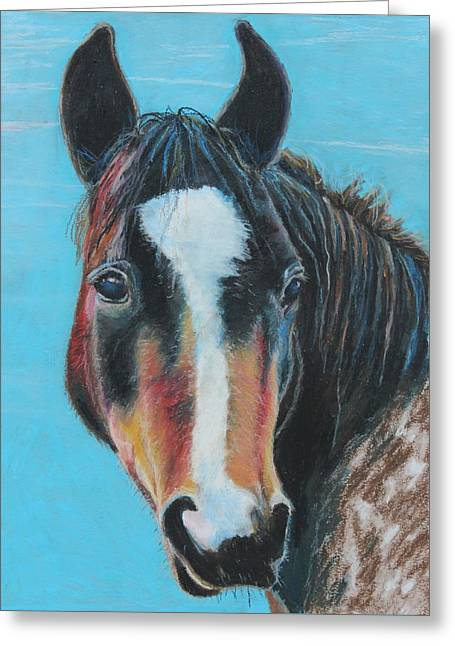 Ranch Pastels Greeting Cards - Portrait of a Wild Horse Greeting Card by Jeanne Fischer
