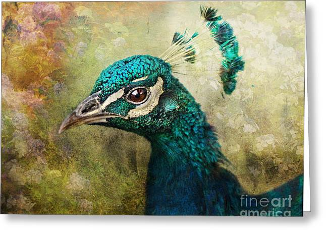 Portrait Of A Peacock Greeting Card by Pauline Fowler