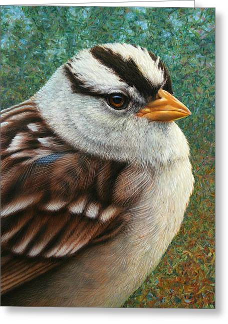 Stripes Greeting Cards - Portrait of a Sparrow Greeting Card by James W Johnson