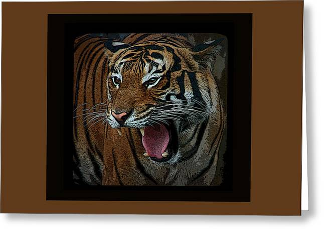 Tiger Greeting Cards - Portrait of a Tiger Greeting Card by Aimee L Maher Photography and Art