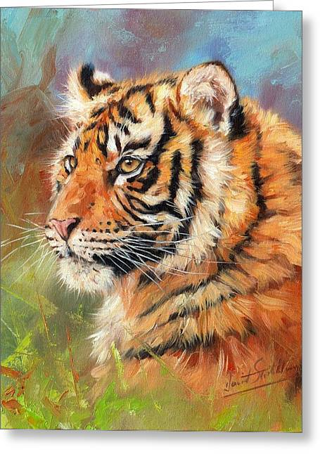 Young Tiger Greeting Cards - Portrait of a Young Amur Tiger Greeting Card by David Stribbling