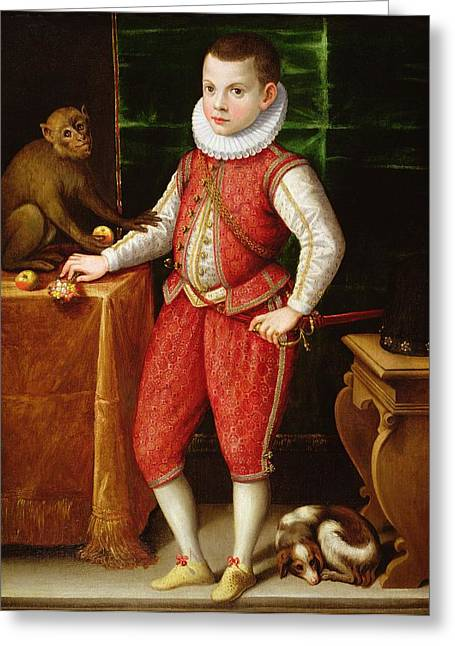 Attributes Greeting Cards - Portrait Of A Young Nobleman Greeting Card by Flemish School