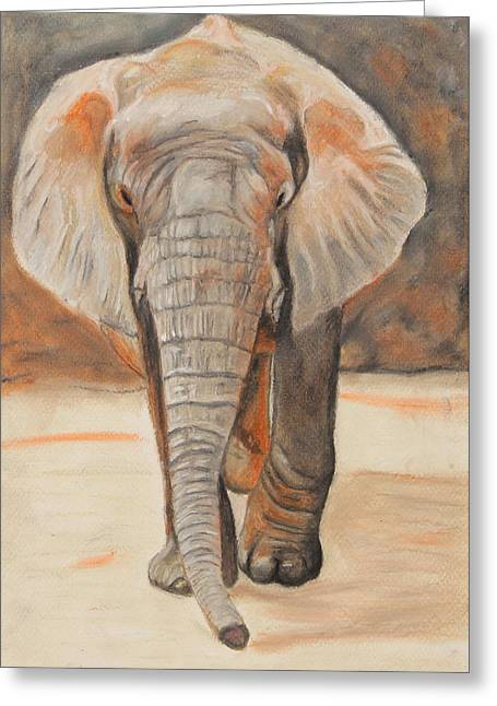 Elephant Pastels Greeting Cards - Portrait of an Elephant Greeting Card by Jeanne Fischer