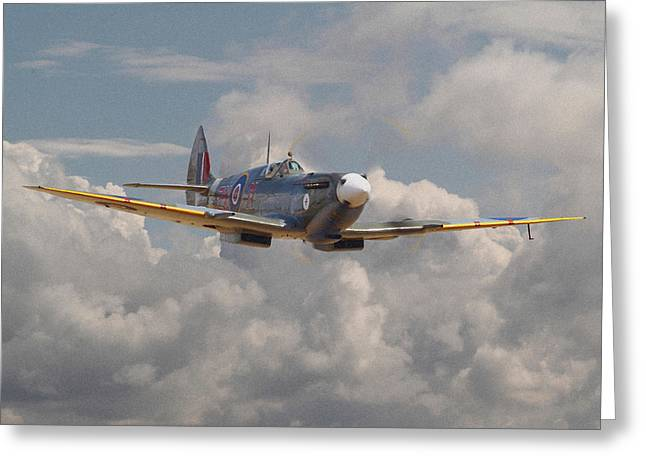 Spitfire Greeting Cards - Portrait of an Icon Greeting Card by Pat Speirs