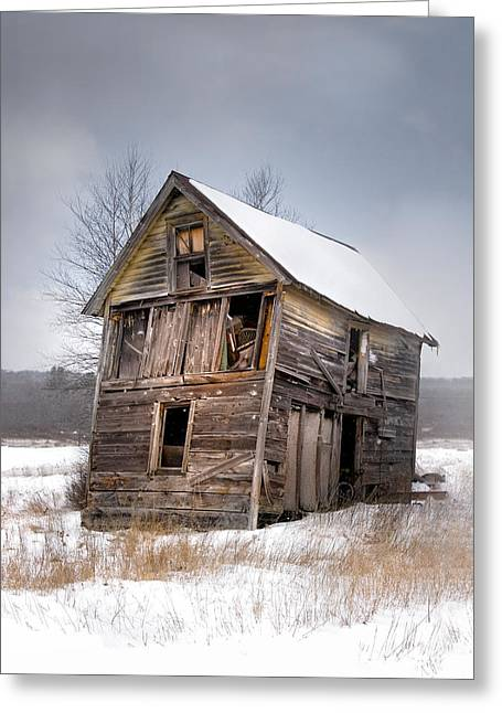Shed Photographs Greeting Cards - Portrait of an Old Shack - Agriculural buildings and barns Greeting Card by Gary Heller