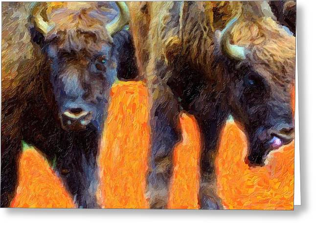 Vertebrate Mixed Media Greeting Cards - Portrait Of Bison  Greeting Card by Toppart Sweden