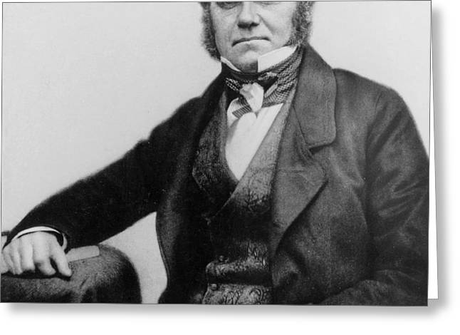 Portrait of Charles Darwin Greeting Card by English Photographer