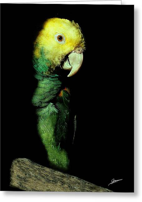 St Petersburg Florida Greeting Cards - Portrait of Polly Greeting Card by Phil Jensen