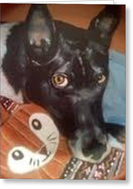 Acrylic Ceramics Greeting Cards - Portrait of Rocky Greeting Card by Victoria Champion