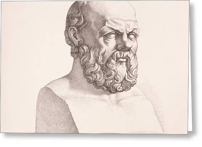 Portrait of Socrates Greeting Card by CC Perkins