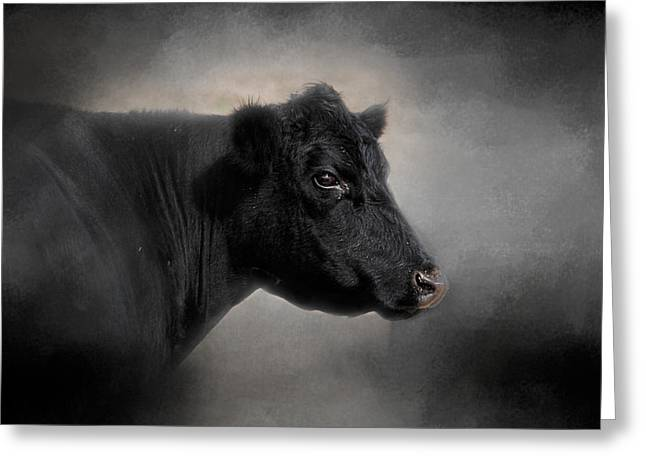 Cattle Farming Greeting Cards - Portrait of the Black Angus Greeting Card by Jai Johnson