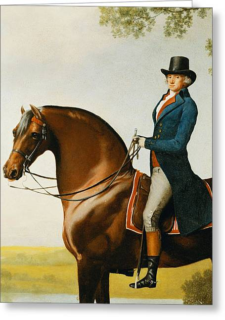 Side View Paintings Greeting Cards - Portrait of Warren Hastings Small Full Length on His Celebrated Arabian Greeting Card by George Stubbs