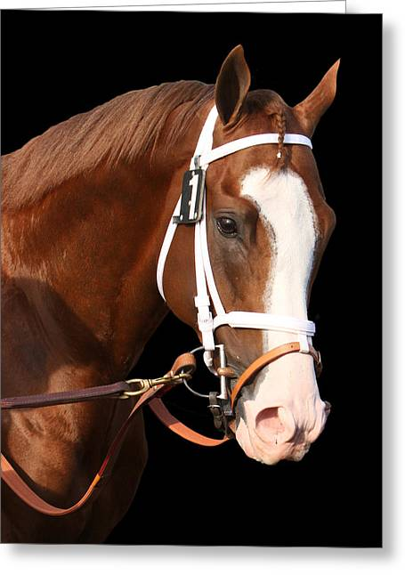 Take Charge Greeting Cards - Portrait of Will Take Charge Greeting Card by Cheryl Ann Quigley