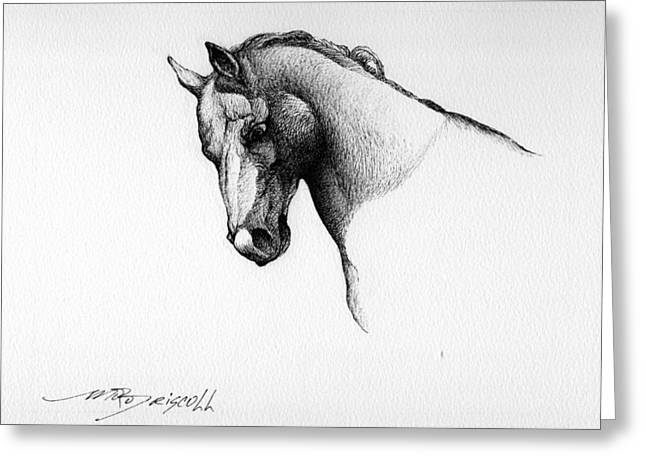 Horse Images Drawings Greeting Cards - Portrait Greeting Card by Ryanne Driscoll