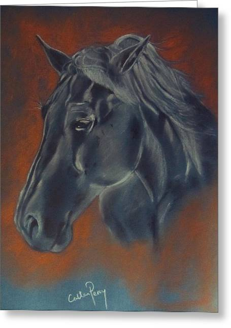 Nature Study Pastels Greeting Cards - Portrait Study of a Horse Greeting Card by Callan Percy