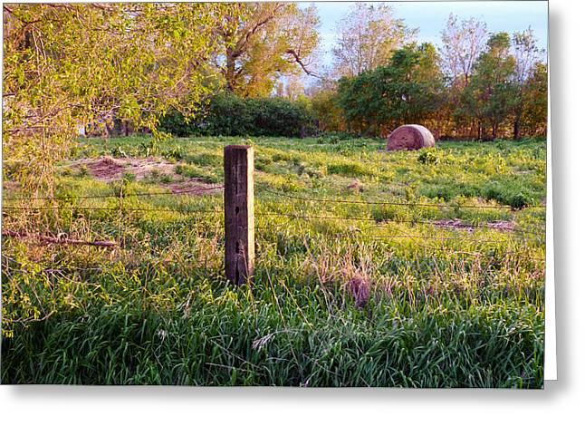 Post And Haybale Greeting Card by Tracy Salava