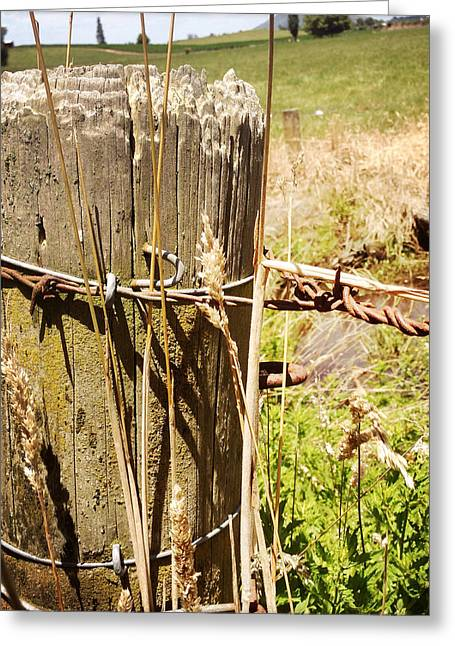Fenceline Greeting Cards - Post and wire Greeting Card by Les Cunliffe