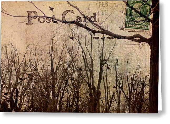 Postal Birds Greeting Card by Gothicrow Images