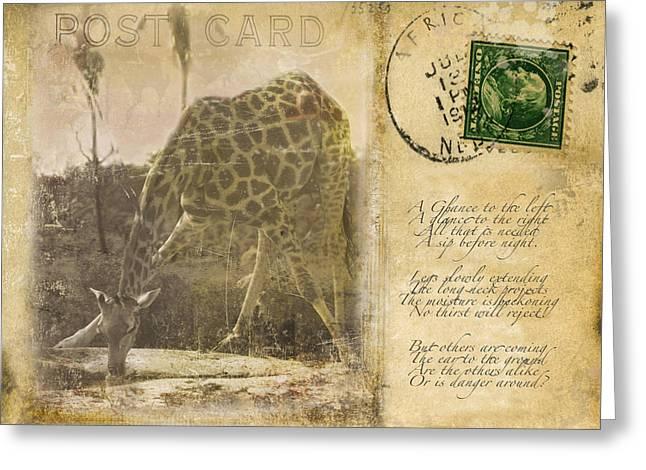 Legs Spread Greeting Cards - Postcard Giraffe Greeting Card by Nichon Thorstrom