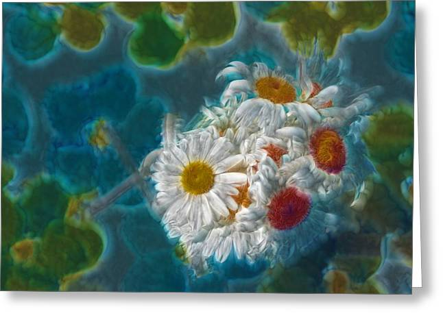Abstracted Realism Greeting Cards - Pot of Daisies 02 - s11bl01 Greeting Card by Variance Collections