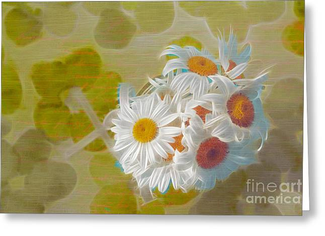 Daisy Greeting Cards - Pot of Daisies 02 - s13ya Greeting Card by Variance Collections