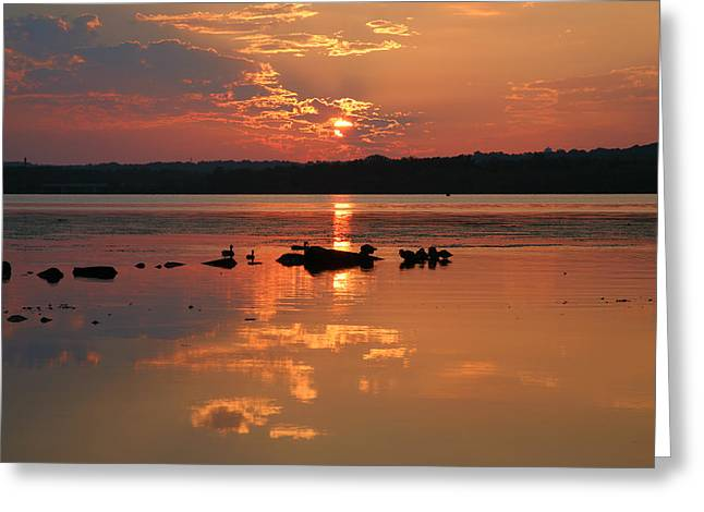 River Prints Greeting Cards - Potomac River Sunrise III Greeting Card by Steven Ainsworth