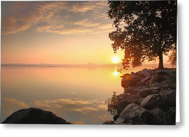 River Prints Greeting Cards - Potomac Sunrise II Greeting Card by Steven Ainsworth