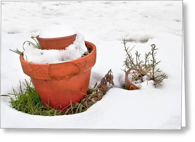 Conditions Photographs Greeting Cards - Pots in the snow Greeting Card by Tom Gowanlock