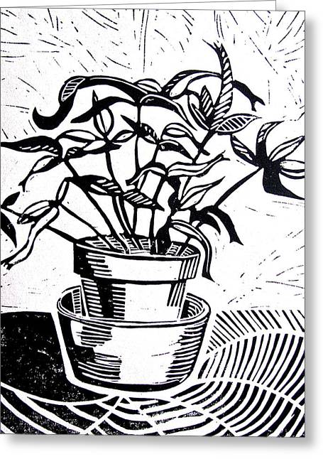Potted Plants Drawings Greeting Cards - Potted Plant Greeting Card by Linda Williams