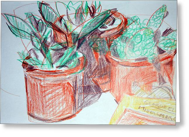 Potted Plants Drawings Greeting Cards - Potted Plants and Novel Greeting Card by Anita Dale Livaditis