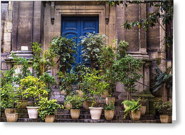 Entryway Greeting Cards - Potted Trees and a Blue Door Greeting Card by Nomad Art And  Design