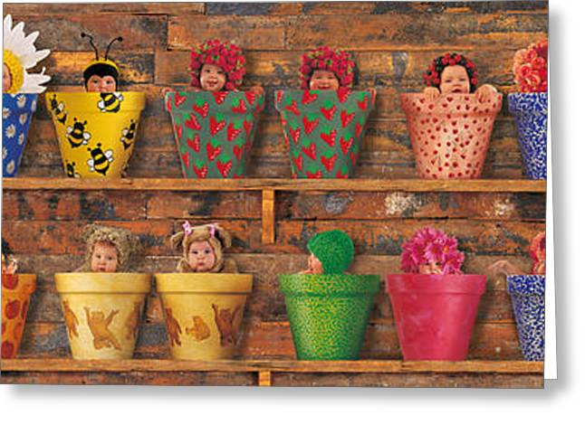 Shed Greeting Cards - Potting Shed Greeting Card by Anne Geddes