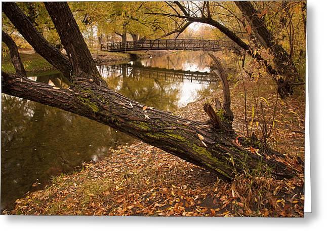 Poudre Crossing  Greeting Card by Michael Van Beber