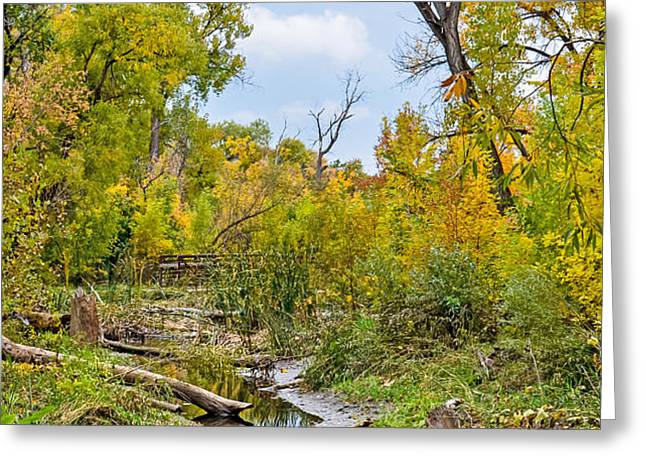 Poudre Walk-2 Greeting Card by Baywest Imaging