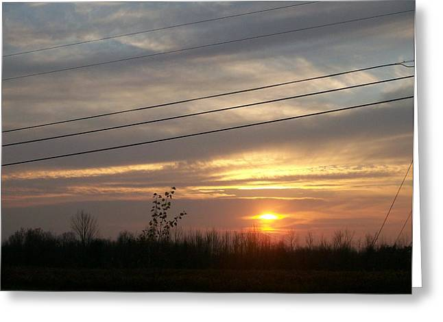 Tree Lines Pyrography Greeting Cards - Power line Sunset Greeting Card by Roxanne Butler