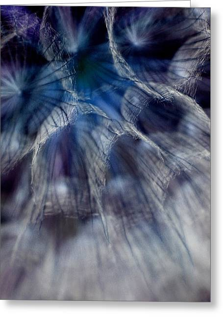 Dandelions Greeting Cards - Power of Faith Greeting Card by  The Art Of Marilyn Ridoutt-Greene