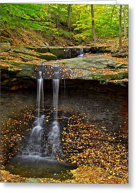 Willow Lake Greeting Cards - Powerful Trickle Greeting Card by Frozen in Time Fine Art Photography