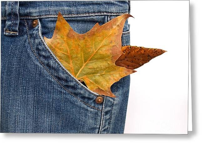 Pantaloons Greeting Cards - Powerty Greeting Card by Sinisa Botas