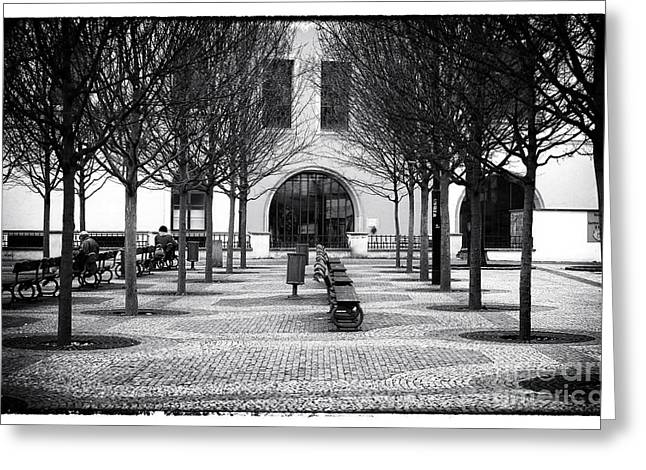 Empty Park Bench Greeting Cards - Prague Park Benches Greeting Card by John Rizzuto