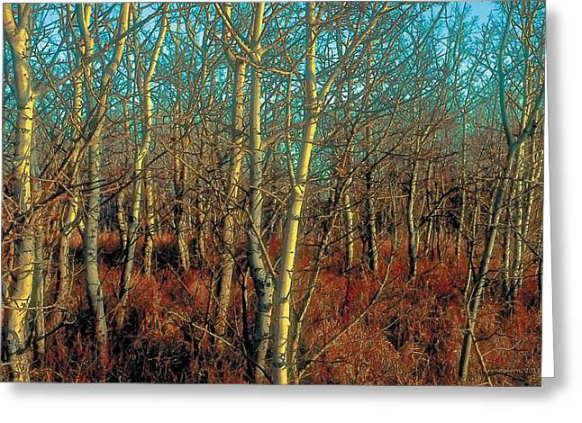 Urban Paintings Greeting Cards - Prairie Autumn 8 Greeting Card by Terry Reynoldson