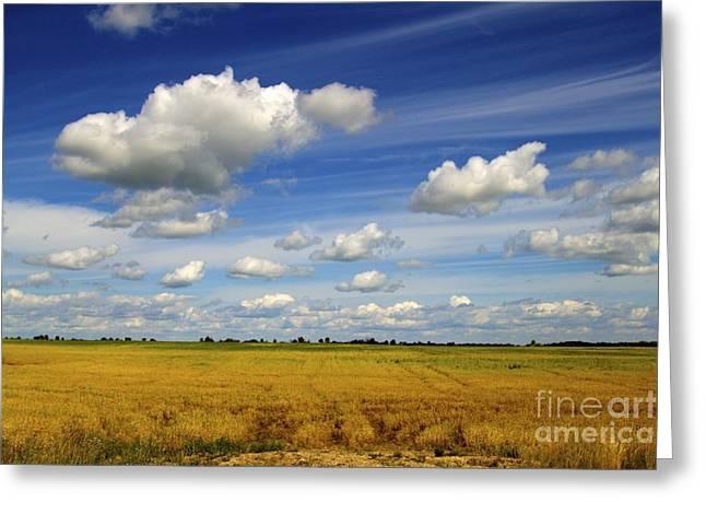 Field. Cloud Greeting Cards - Prairie Daydream Greeting Card by Alanna DPhoto