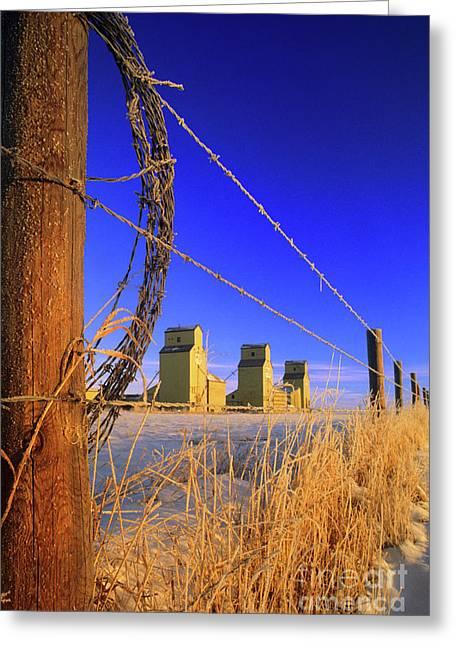 Bob Wire Greeting Cards - Prairie Grain Elevators Greeting Card by Bob Christopher