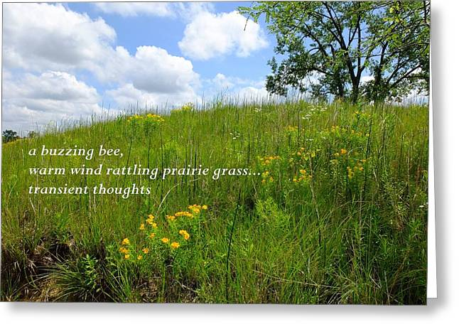 Prairie Hike Greeting Card by Scott Kingery